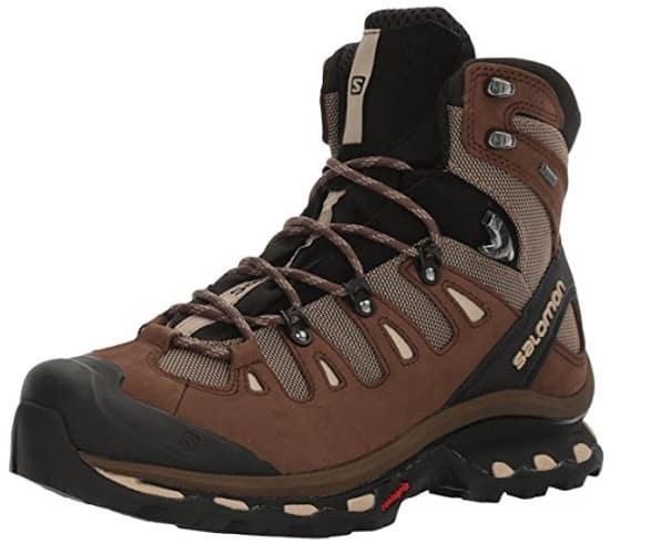 Salomon Men Quest 4D 2 GTX Deteroit Hiking Boot